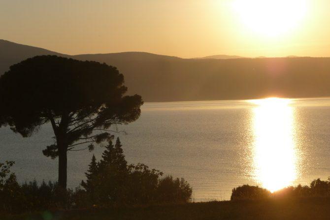 Sonnenuntergang am Meer Baum im Vordergrund